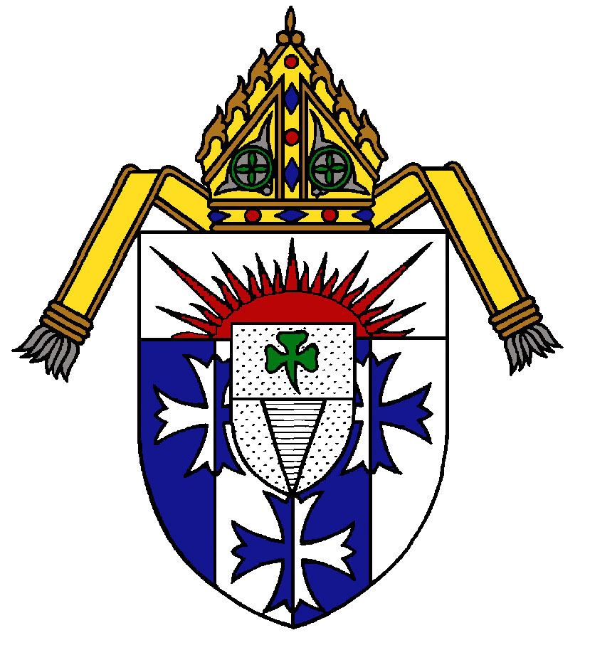 Diocese Bankruptcy Case